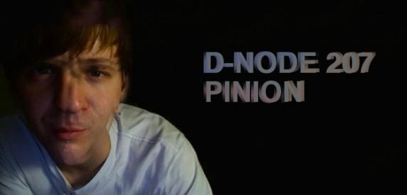 [Image: pinion-rotator-572x275.jpg]